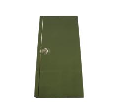 Бумага 60 х 60 см (20 шт.), зеленая с золотой полосой