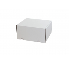 Коробка 18*16*9 см, бел, ДП76